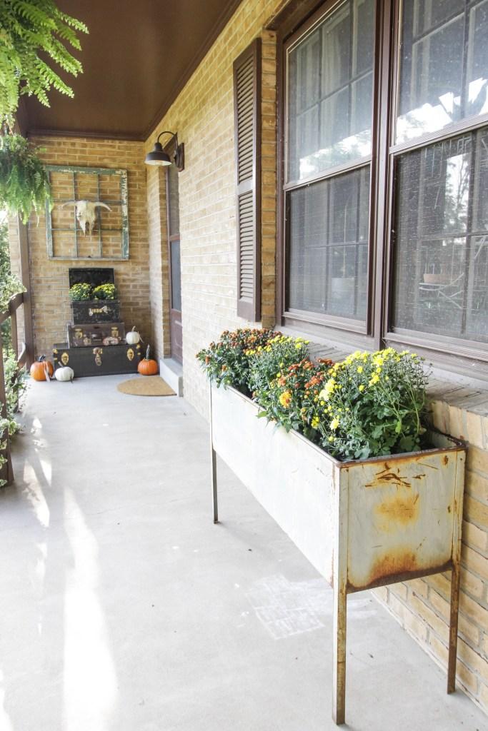 Vintage Industrial bin as fall mum planter