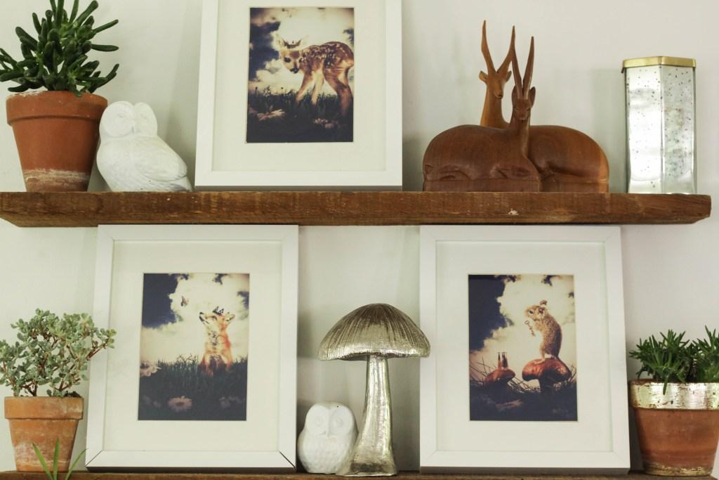 Woodland Styled Shelves