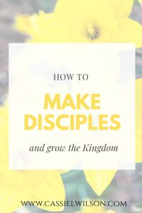 How to make disciples and grow the kingdom | Cassie L. Wilson - learning to be the light