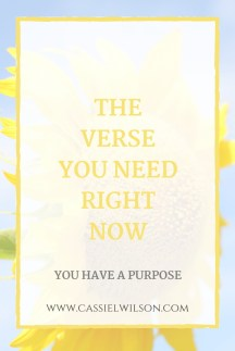 The Verse You Need Right Now_ Cassie L. Wilson- learning to be the light