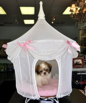 Princess Dog House White And Pink