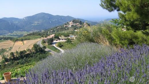 Wie Alles Begann Castel Franc Velleron Provence