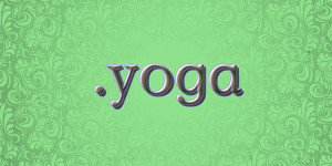 Brian Castellani | dot YOGA| Yoganomics.yoga | independent.yoga | indie.yoga
