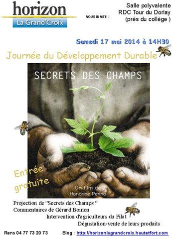 Affiche  de dév durable 17 mai 2014