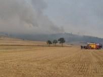 feux forêt 11