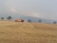 feux forêt 16