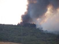 feux forêt 2