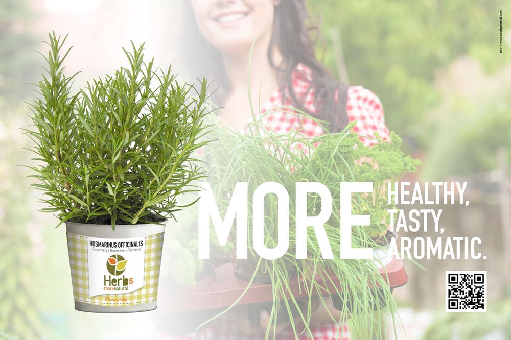 herbs-albenga-dellavalle-logo-castigamatti