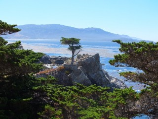 Monterey - Pebble beach