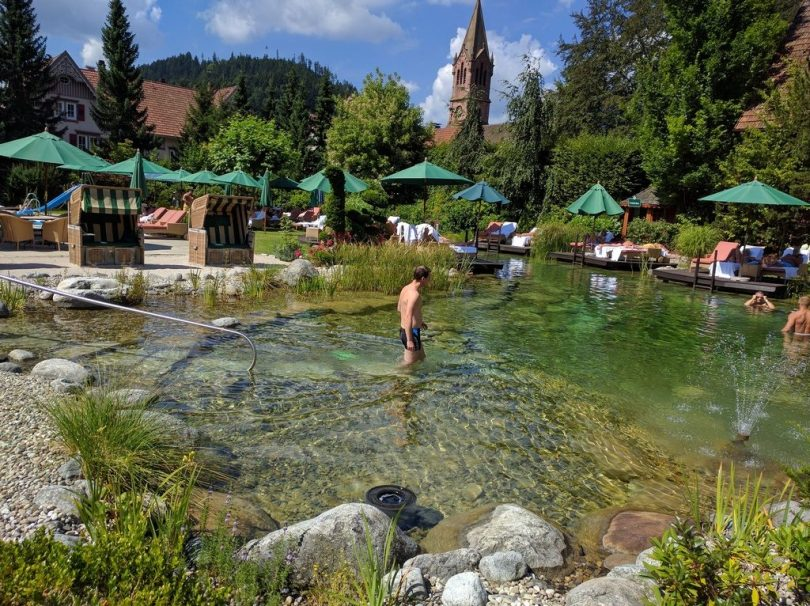Hotel Bareiss Schwarzwald - étang / piscine naturelle