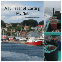 A Full Year of Casting My Net