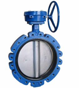 Image result for A lug-style butterfly valve