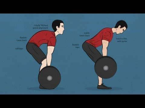 Image result for cat back deadlift