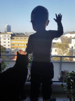 Fenster_schauen