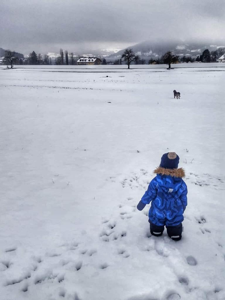Little S im Schnee am Attersee