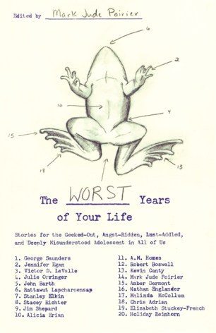 The Worst Years of Your Life by ; design by Catherine Casalino (Simon & Schuster / August 2007)