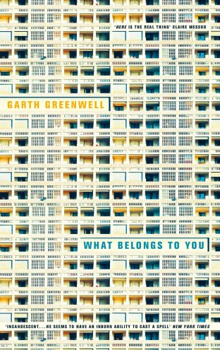 What Belongs to You by Garth Greenwell; design by Justine Anweiler (Picador / April 2016)
