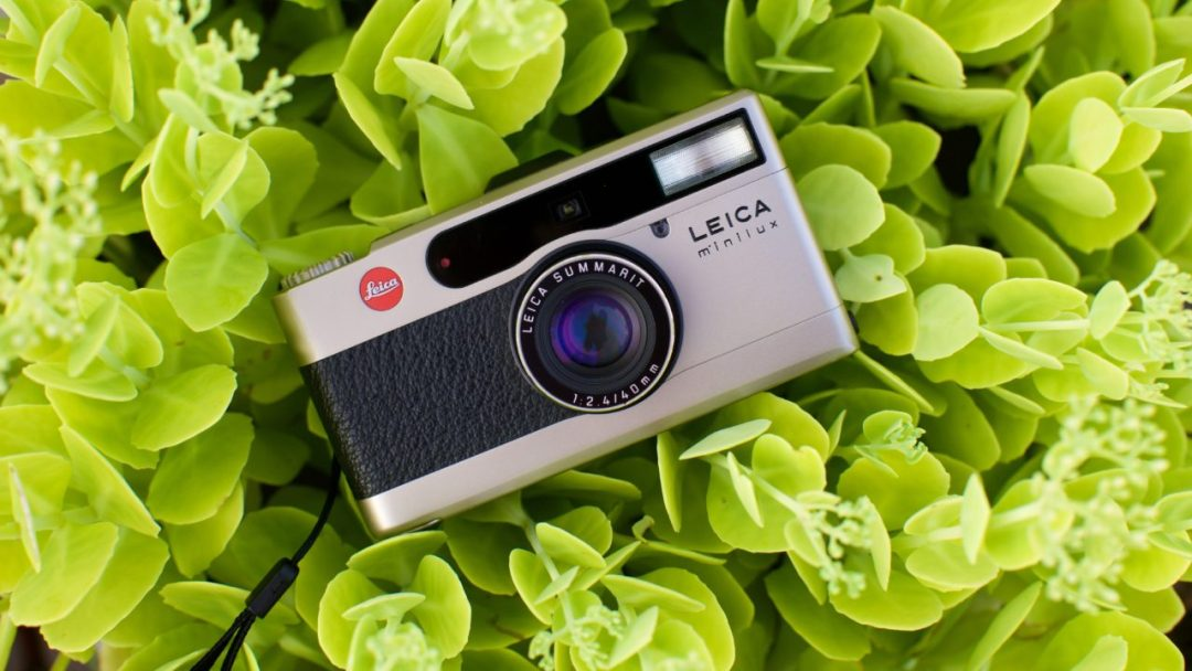 Leica Minilux 35mm Point and Shoot Camera Review 2