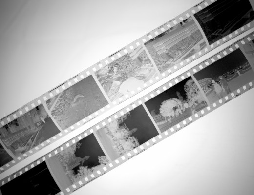how to develop black and white film (15 of 16)