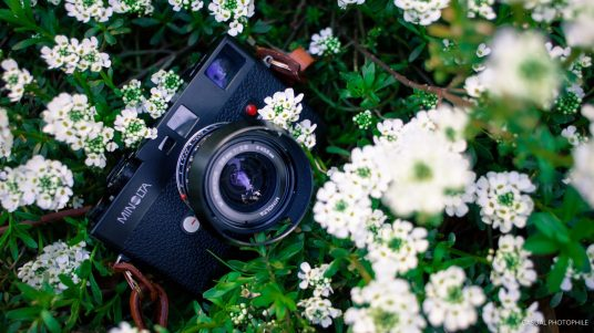 Minolta CLE review (7 of 7)