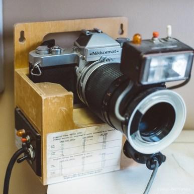 Zeiss Planar 50mm 1.4 c-y mount review-15