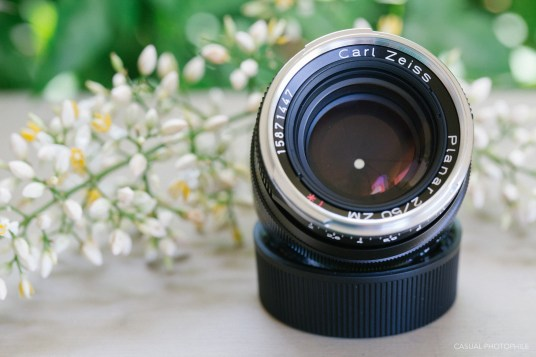 zeiss sonnar versus planar 50mm shootout-13