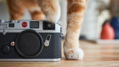 Leica M6 Classic Unboxing-8