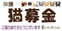 保護猫募金
