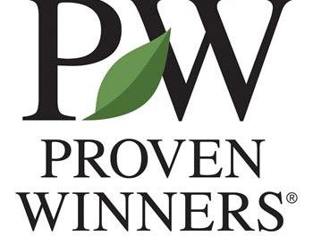 Proven Winners: La primera marca de plantas llega a Catalunya Plants
