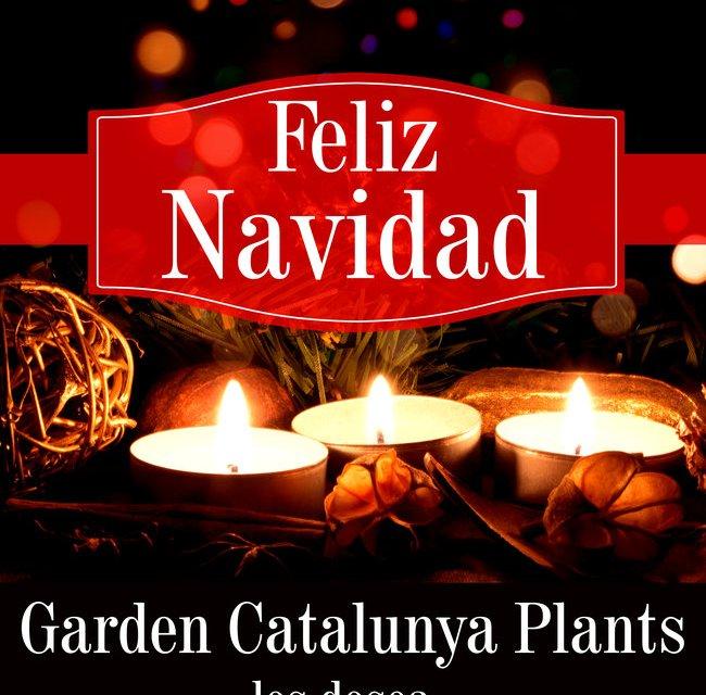 Garden Catalunya Plants les desea Felices Fiestas.