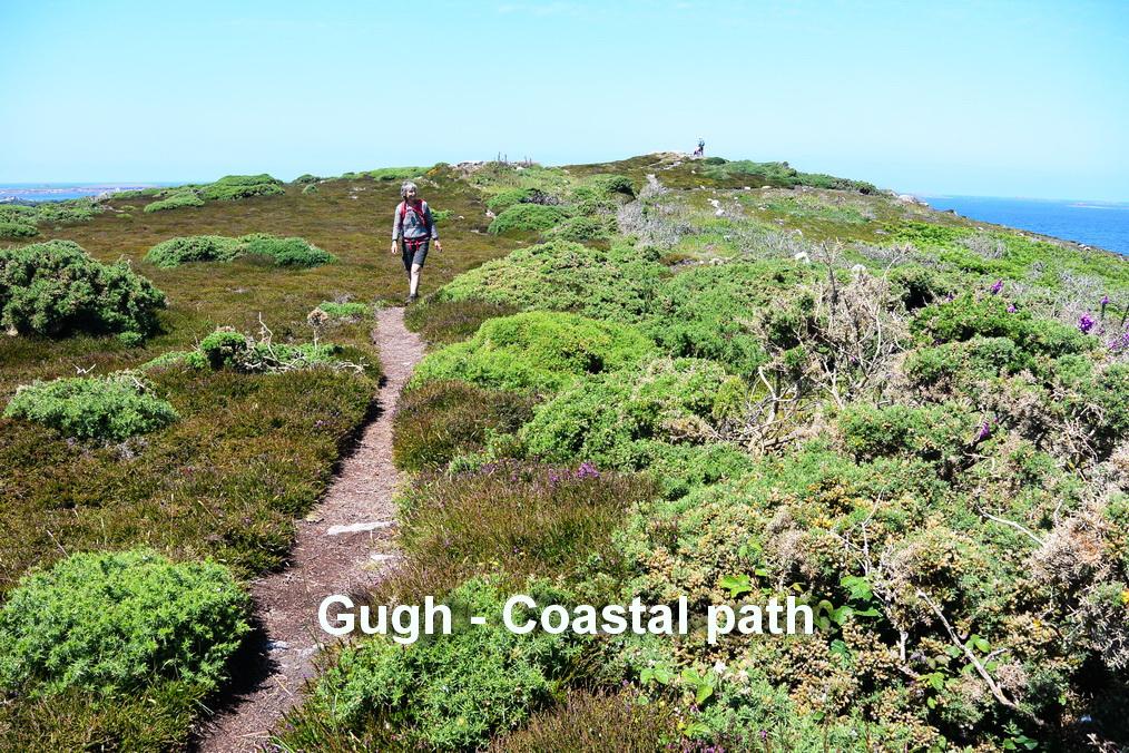 Gugh - Coastal path3