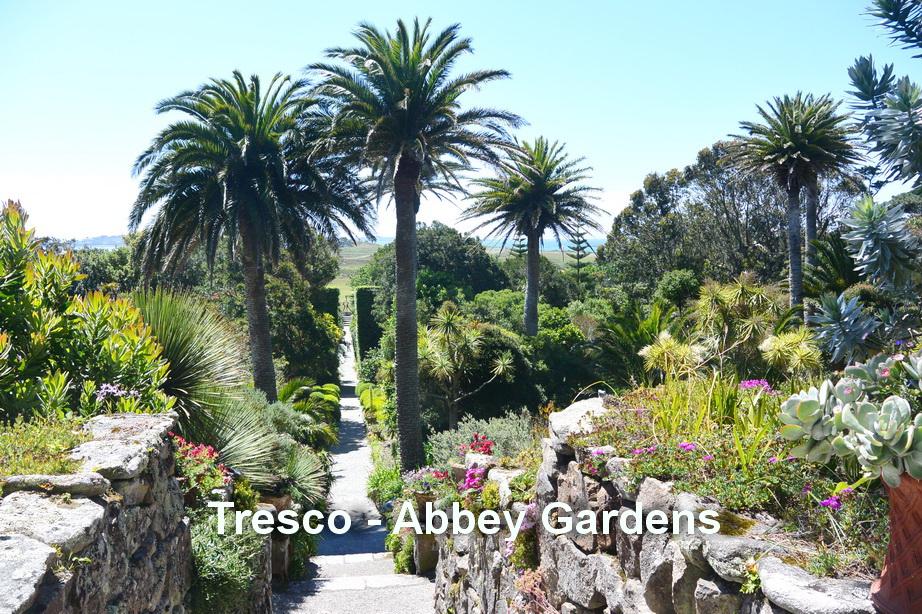 Tresco - Abbey gardens4