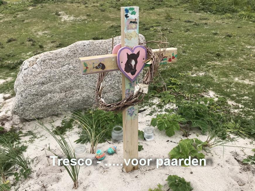 Tresco - Begraafplaats voor paarden2
