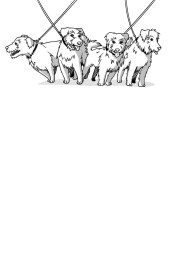 A Chapter heading with Mrs. Didsbury's four identical long-haired Jack Russell terriers.