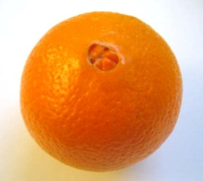 appelsin1.jpg