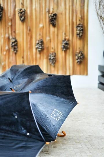 Asara i regn