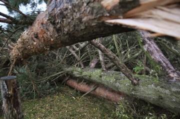 Skaderne efter orkanen 28. oktober 2013