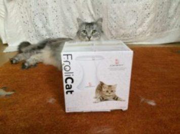 FroliCat cat teaser toys review