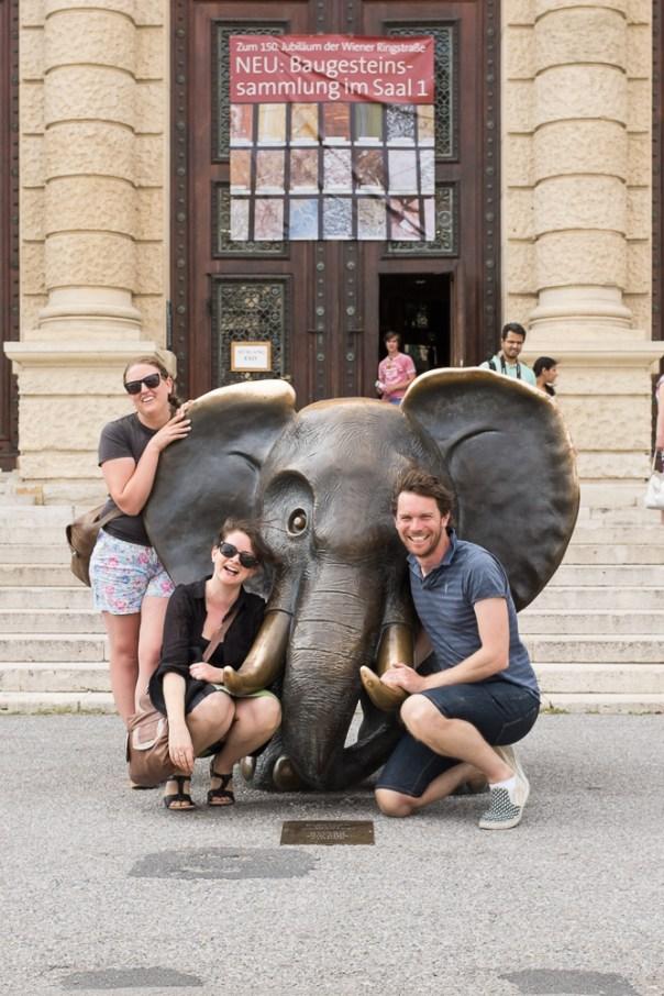 Naturhistorisches Museum und Elefant