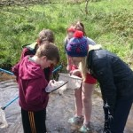 "Students and teacher from Kilfane National School taking part in ""StreamScapes Loobagh"""