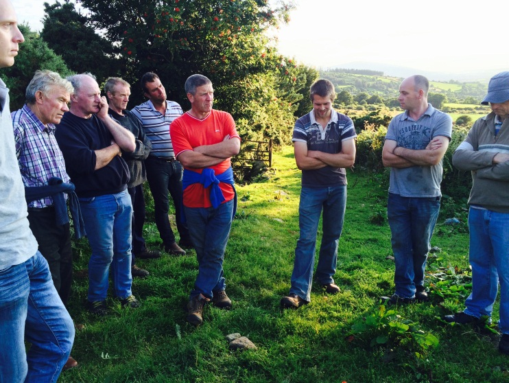 Ballyglisheen Farm Walk (Photo - Helena Fitzgerald)