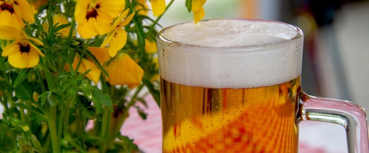 How to Brew Your Own Beer at Home