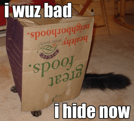 Bad cat hides lolcat