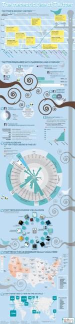 Twitter: crescita e altri dati in un'infografica