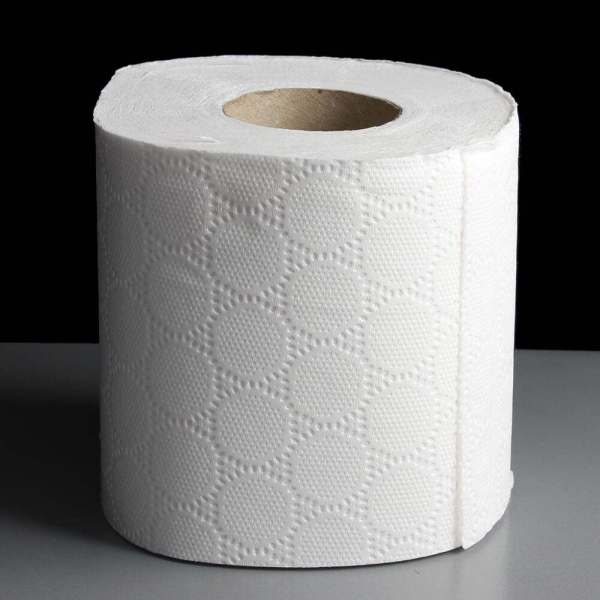 Little Duck  So Soft  3 Ply Extra Soft White Toilet Tissue