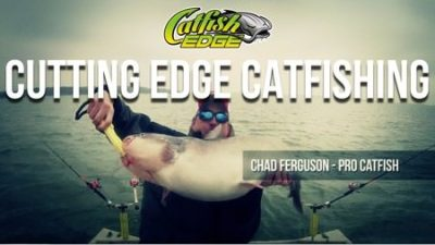 Catfish Edge Trailer Thumb 450
