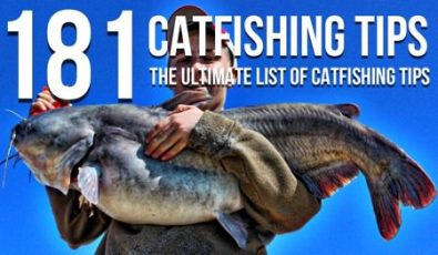 181 Catfishing Tips (The Ultimate List Of Catfishing Tips)