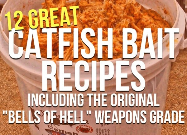 Homemade Catfish Bait Secrets (12 Catfish Bait Recipes)