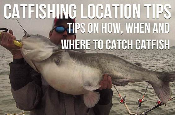 Catfishing Location Tips How When Where