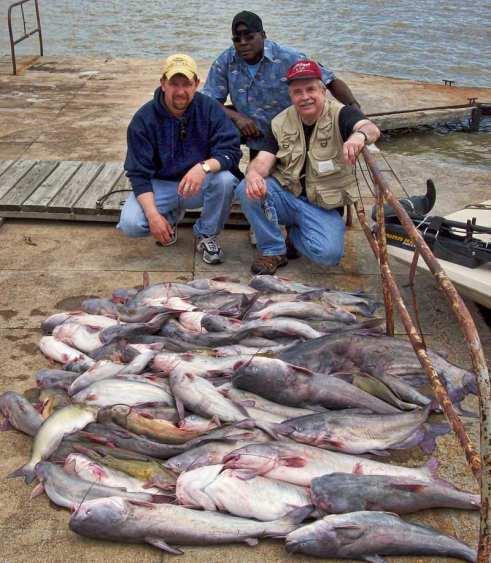 Splat Fishing